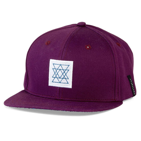 Climber Ballcap / Color-Winter Berry