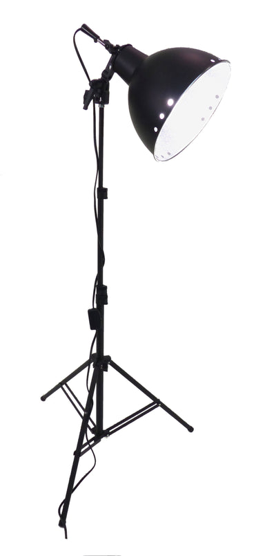 ALZO 250 LED light head for product photography - with light stand