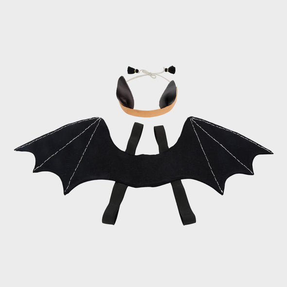 Dress Up Fledermaus
