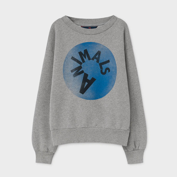Sweatshirt Bear Grey Animals