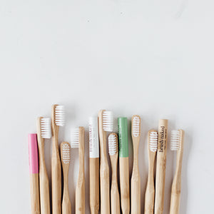 Adult Toothbrushes - 12 Pack