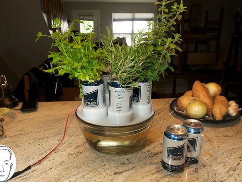 Beer Can Hydroponics