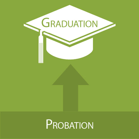 Distance Learning: Strategies To Support At-Risk & Probationary Students