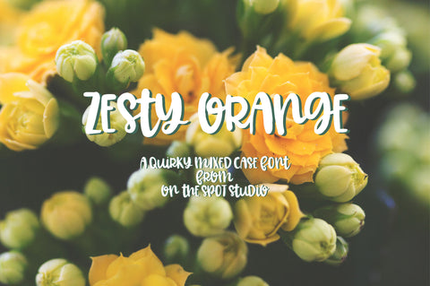 Zesty Orange