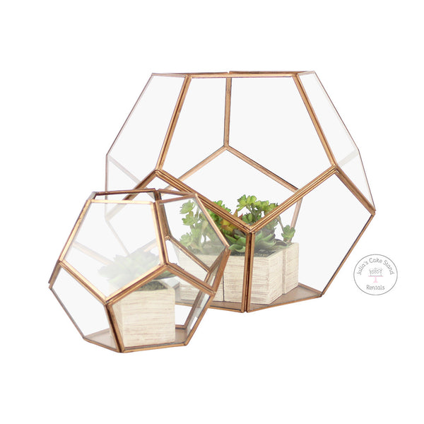 Copper Terrariums, with synthetic succulents - Julia's Cake Stand Rentals