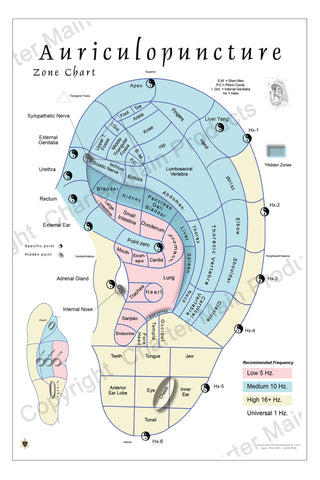 Auriculopuncture Ear Poster-mapping a micro-system of TCM-color coded for use with certain electronic devices