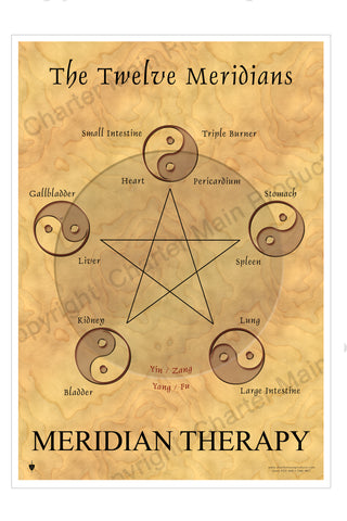 The Twelve Meridians-Meridian Therapy-The Five Elements-Poster