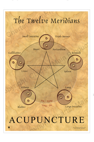 The Twelve Meridians-Acupuncture-The Five Elements-Poster