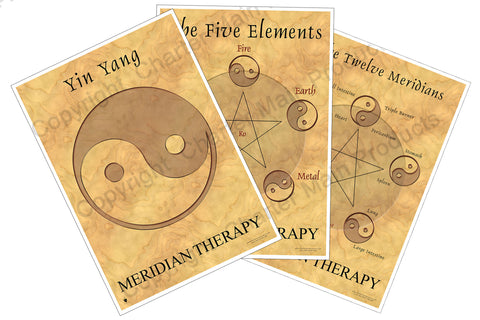 The Philosophy Series-Meridian Therapy-The Five Elements-Yin Yang-The Twelve Meridians