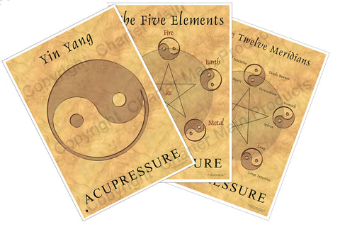 The Philosophy Series-Acupressure-The Five Elements-Yin Yang-The Twelve Meridians
