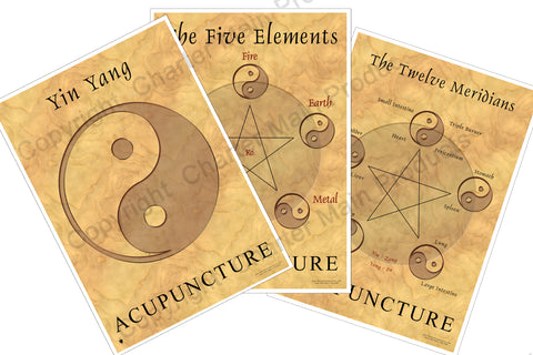 The Philosophy Series-Acupuncture-The Five Elements-Yin Yang-The Twelve Meridians