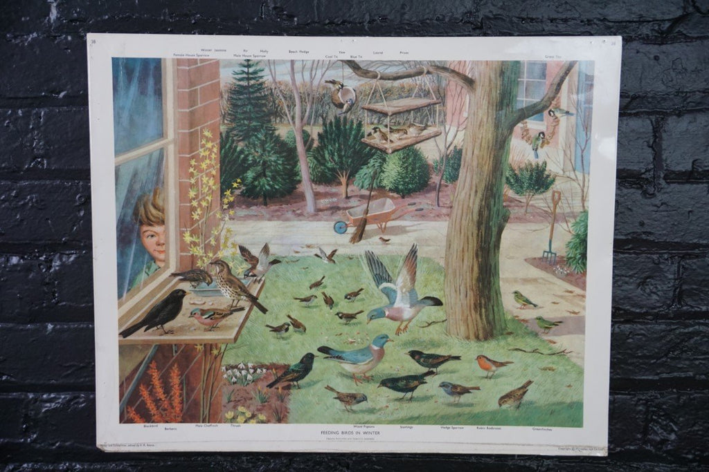 Vintage Poster- Feeding Birds in Winter - Bloodline Merchants
