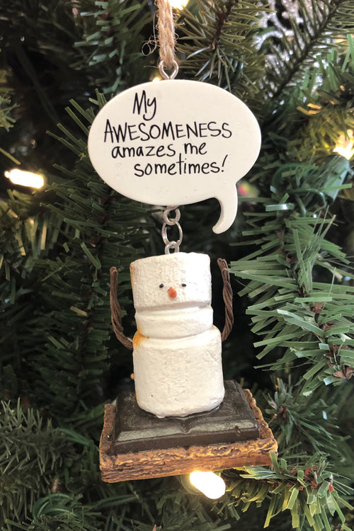 Toasted Awesome S'more Resin Ornament