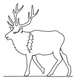 Elk quilting pattern