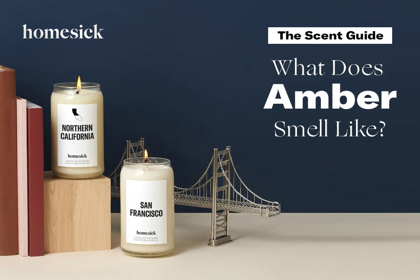 The Scent Guide What Does Amber Smell Like