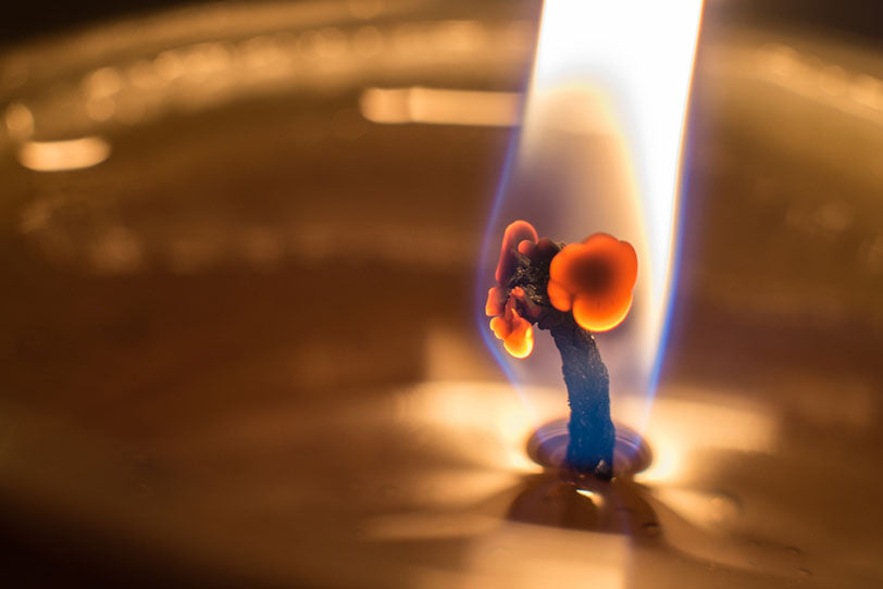 candle wick burning curling focus