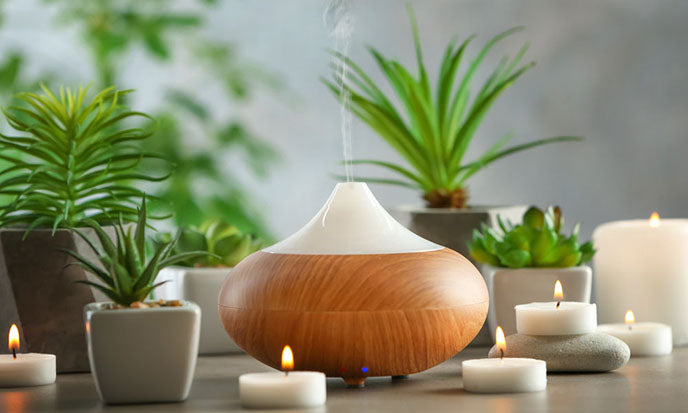 essential oil diffuser with home plants