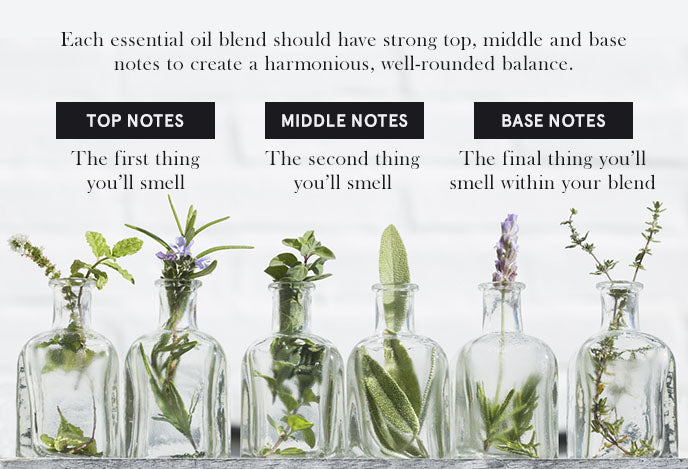 essential oil notes graphic