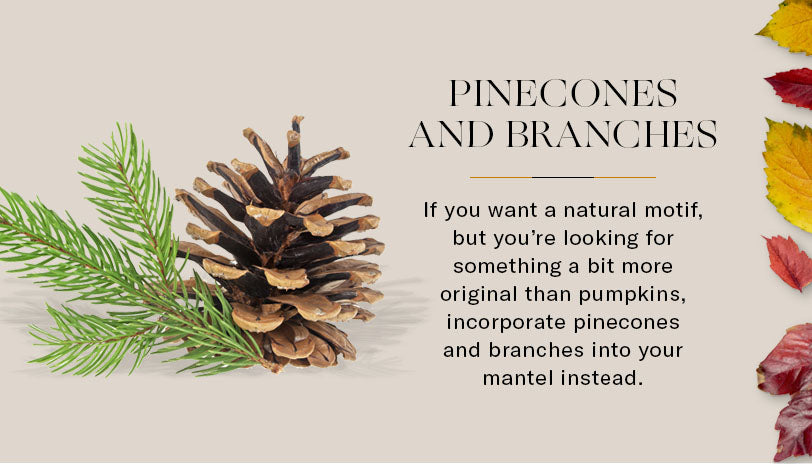 pinecones and branches