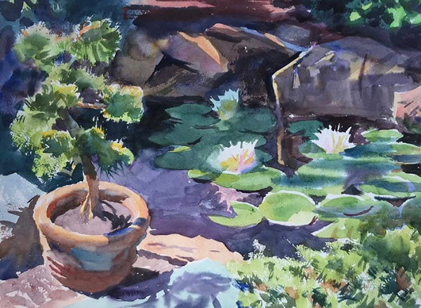 Bonsai and Water Lily | Botanical Gardens of Ozarks