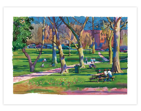 Print | The Ole Miss Grove