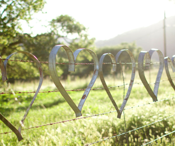 Glitterfarm Hearts are hand shaped from reclaimed wine barrel straps from California