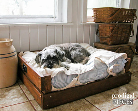 Prodigal Pieces DIY Dog bed to be built and stained with CeCe Caldwell's Paints products