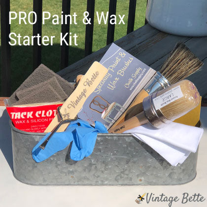Pro Paint & Wax Starter Kit