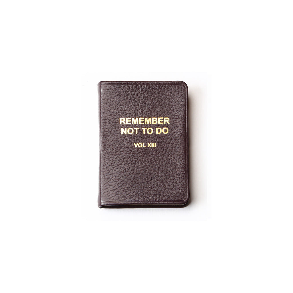 Remember What Not To Do VOL XIII - Mini Notebook - Oxblood