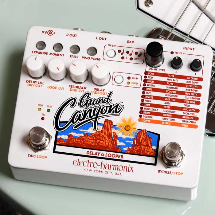 Electro-Harmonix Grand Canyon Delay & Looper Pedal