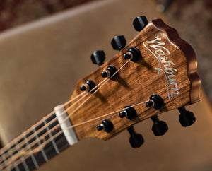 Washburn Guitars Bella Tono Vite S9V