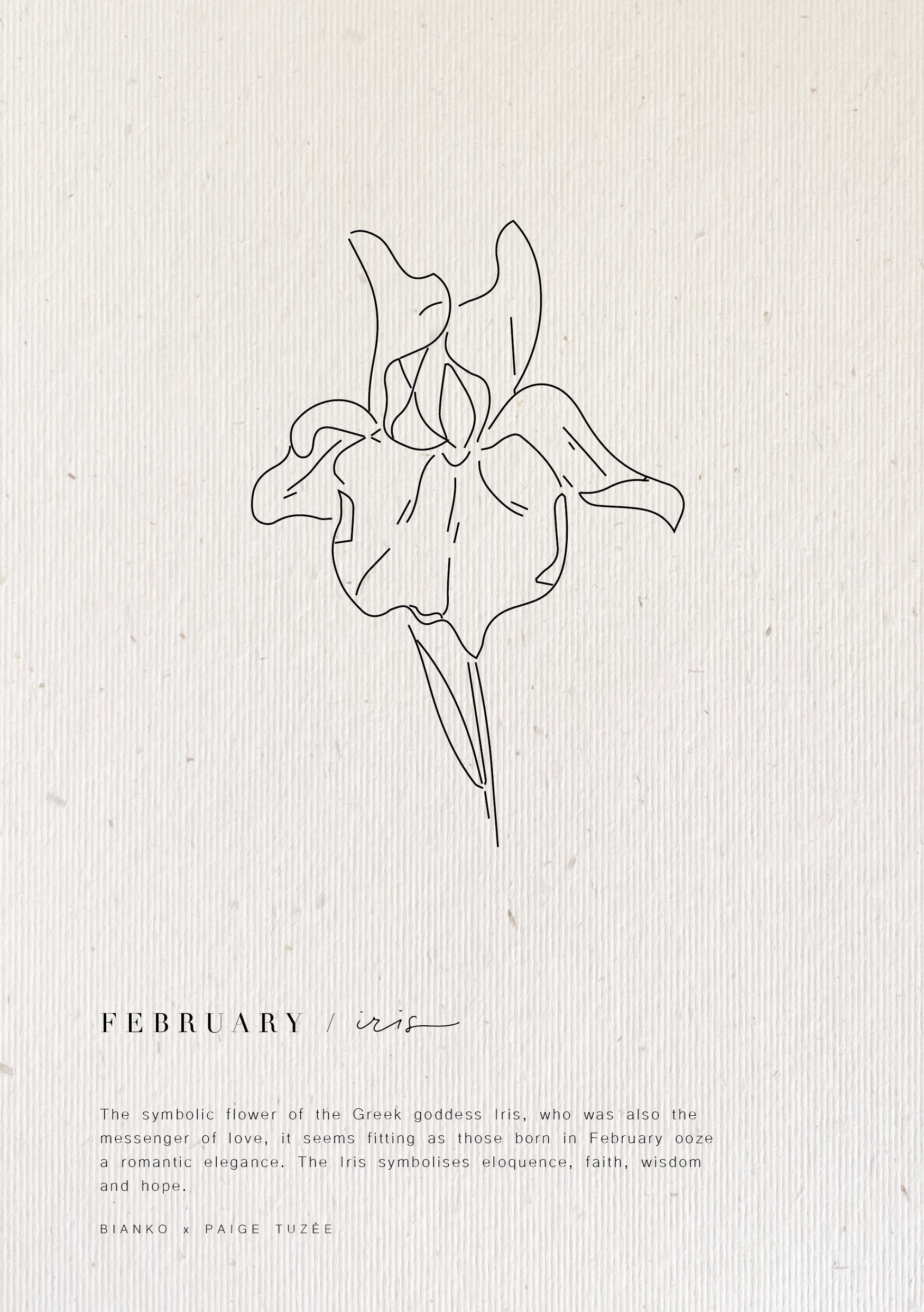 Limited Edition Birth Flower A5 Prints