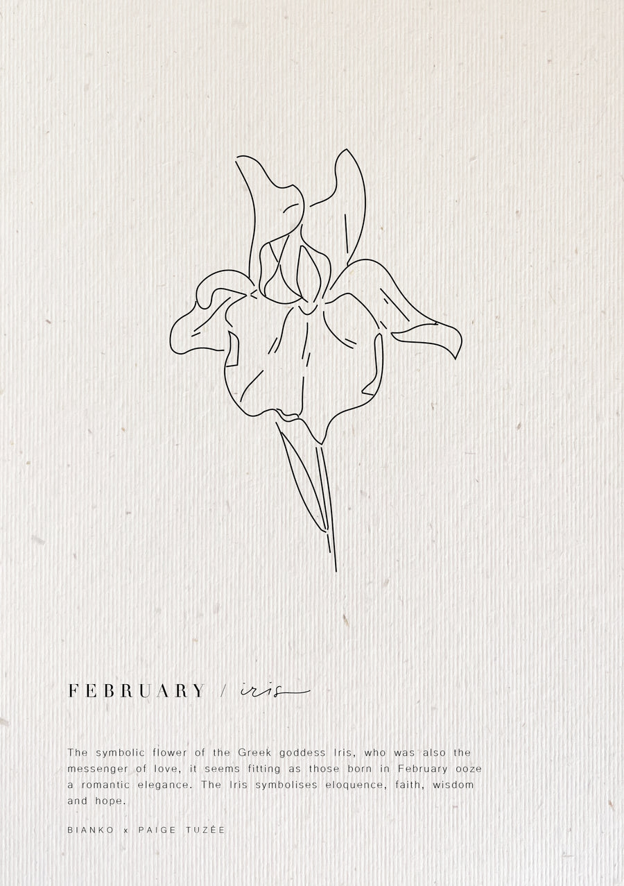February / Iris - Limited Edition Birth Flower A5 Print