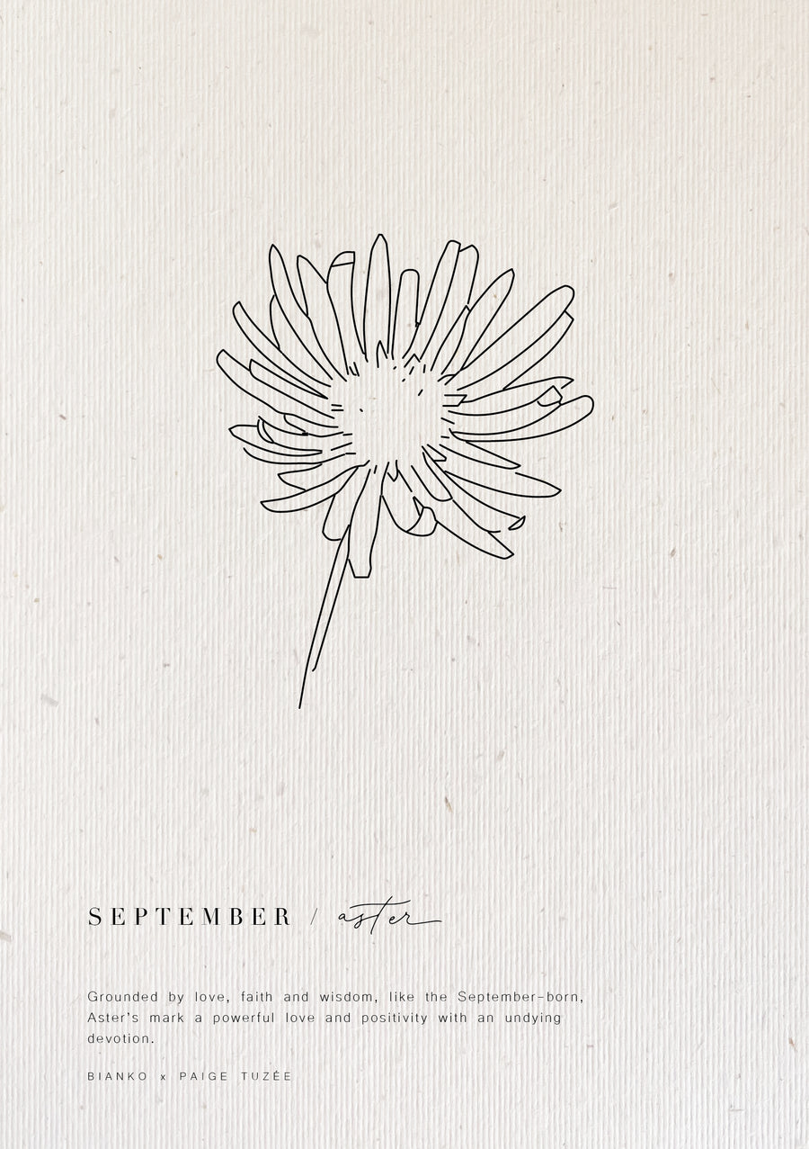 September / Aster - Limited Edition Birth Flower A5 Print