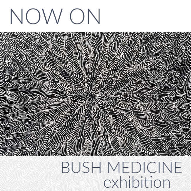 Now On: Bush Medicine Exhibition