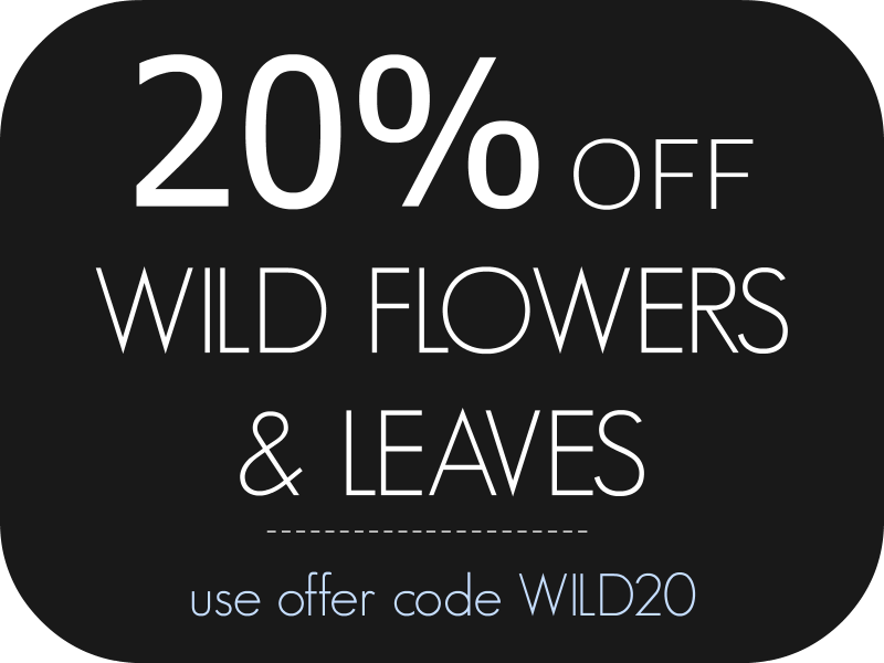 Sale on Wild Flowers and Leaves paintings at Utopia Lane Gallery