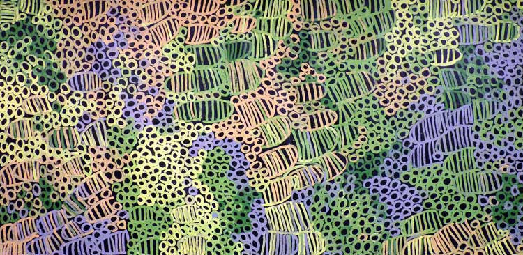 Awely Anemangkerr by Minnie Pwerle by Minnie Pwerle, 360cm x 180cm. Australian Aboriginal Art.