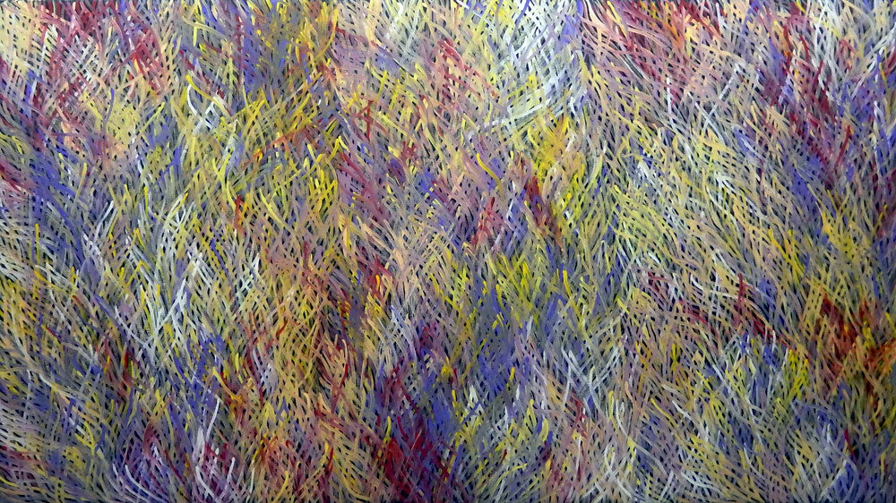 Grass Seed Dreaming by Barbara Weir by Barbara Weir, 270cm x 150cm. Australian Aboriginal Art.