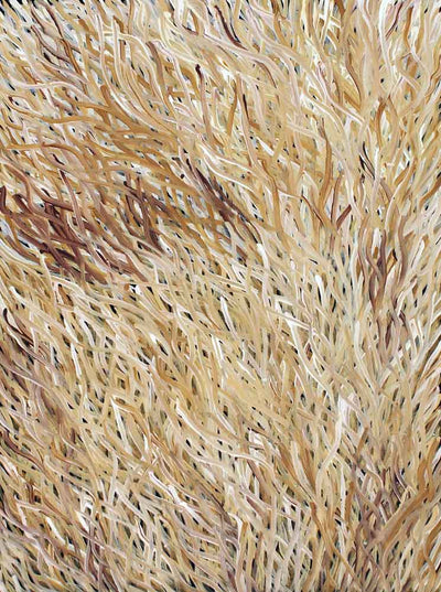 Grass Seed Dreaming by Barbara Weir by Barbara Weir, 60cm x 45cm. Australian Aboriginal Art.