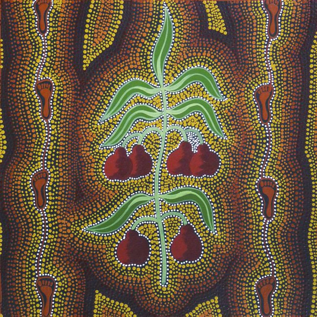 Women Gathering Bush Tucker (Quandongs) (SOLD), 45cm x 45cm. Aboriginal Painting. #AboriginalArt #UtopiaLane