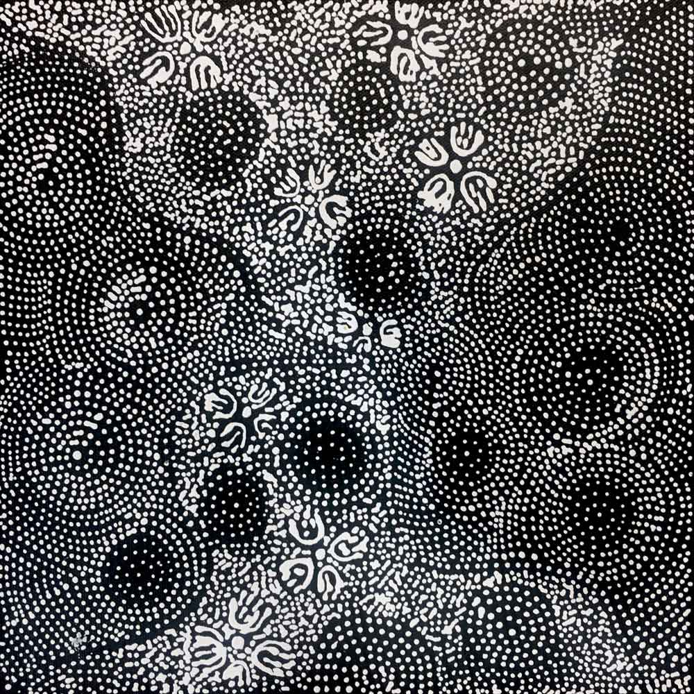 Country by janie petyarre by janie petyarre 30cm x 30cm australian aboriginal art