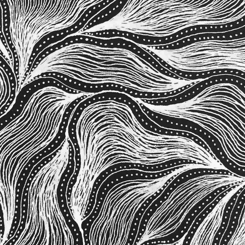 Pencil Yam Story by Delvine Petyarre. Australian Aboriginal Art.