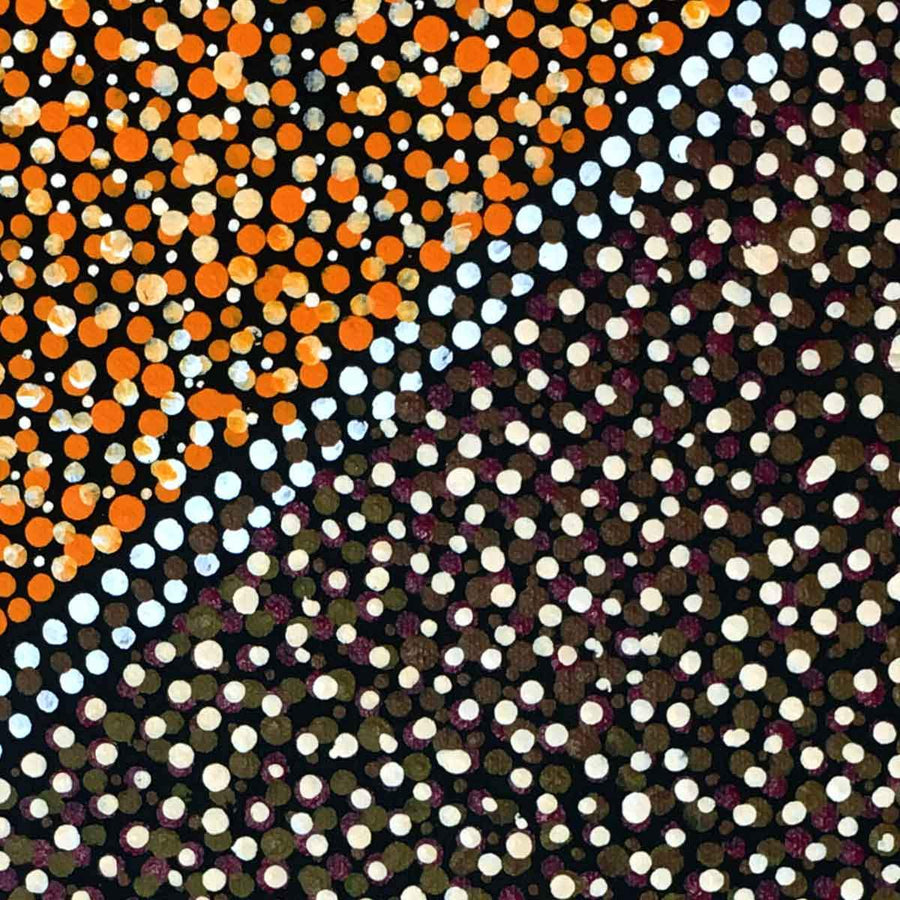 Arwengerrp (Bush Turkey) by Rosie Pwerle. Australian Aboriginal Art.