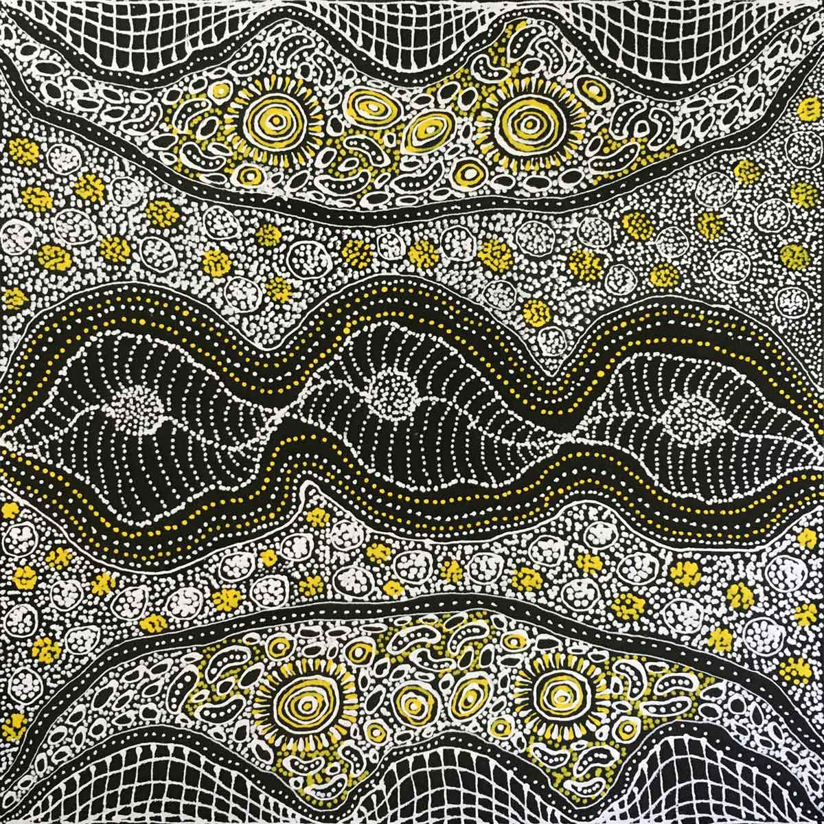 My Country by Dulcie Pwerle Long. Australian Aboriginal Art.