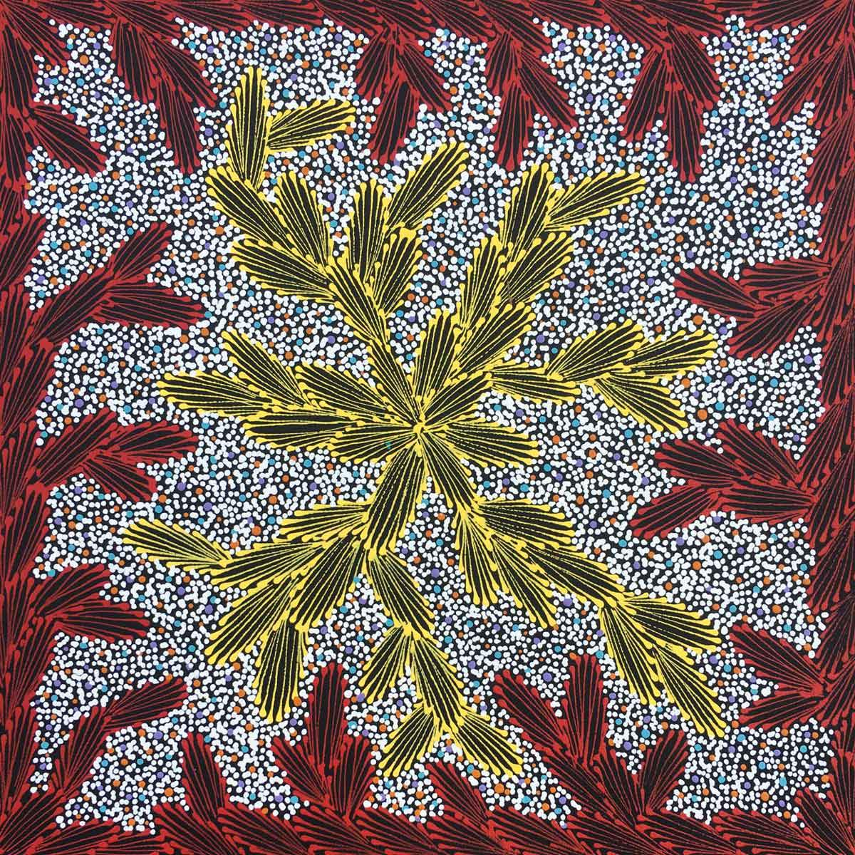 Ntyeny Ngkwarl by Loretta Jones Petyarre. Australian Aboriginal Art.