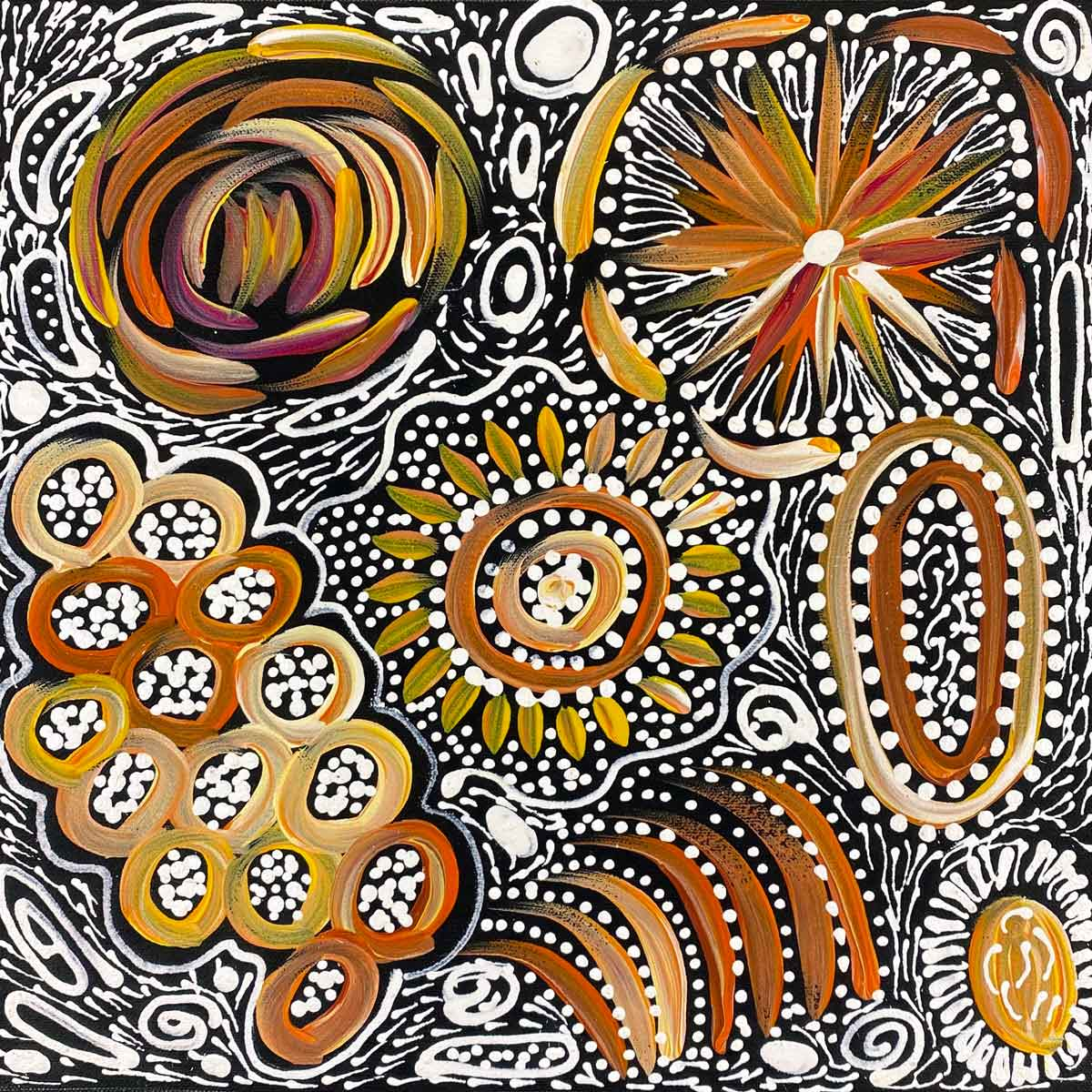 Pencil Yam Flower by Janet Golder Kngwarreye