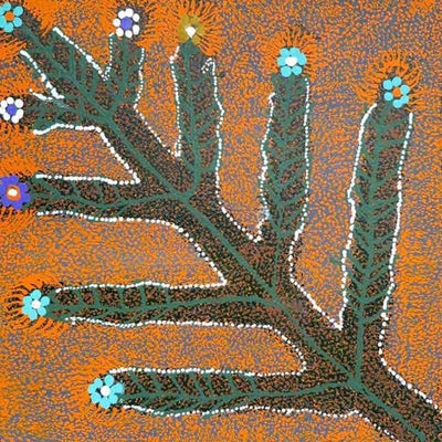 Sweet Honey Grevillea by Doreen Payne, 30cm x 30cm. Aboriginal Painting. #AboriginalArt #UtopiaLane