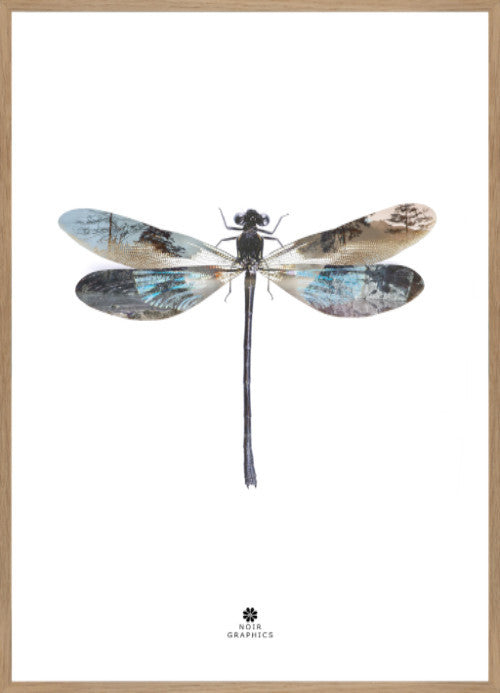 ART POSTER - Dragon Fly