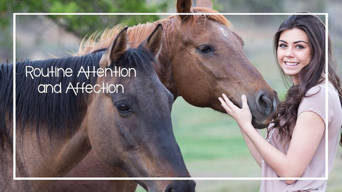 Routine Attention and Affection