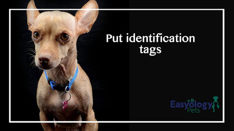 Put Identification Tags